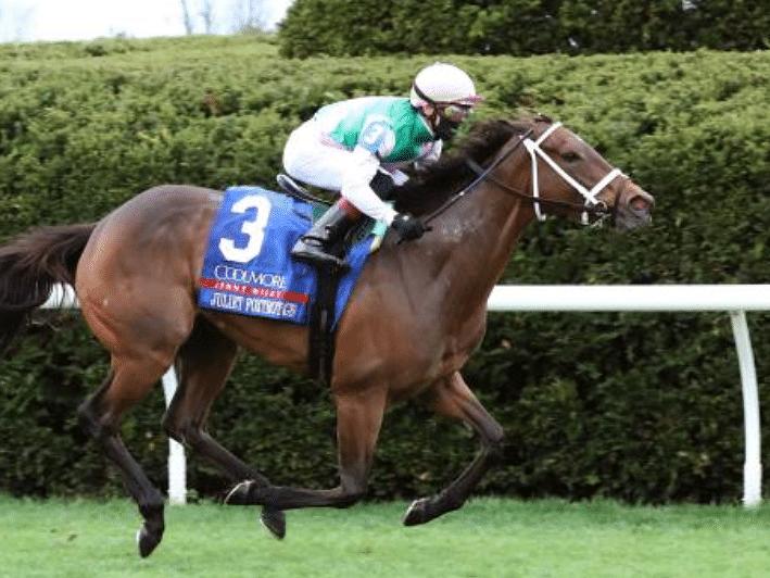 Garrity's Saturday Stakes picks races at Belmont, Woodbine, Santa Anita & the Mint Julep at Churchill Downs