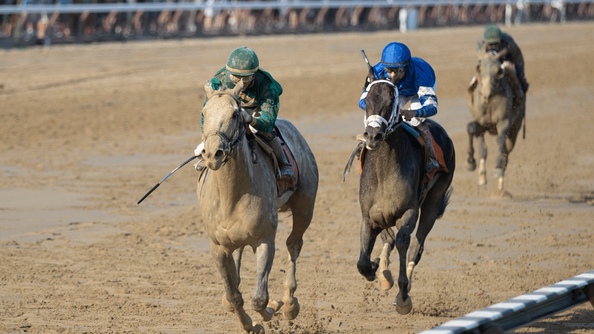 Friday at Saratoga: God's Tipster has three picks, including the 9th race Curlin Stakes, a Travers prep