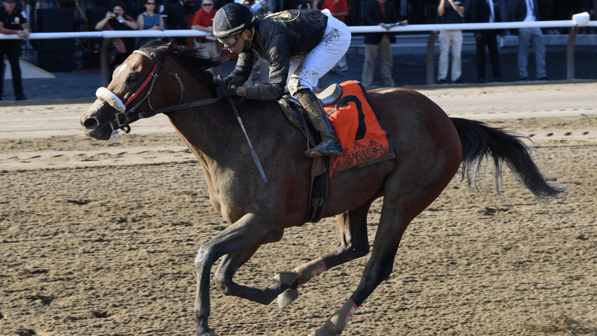 God's Tipster's four Friday Saratoga race picks include the Tale of the Cat Stakes