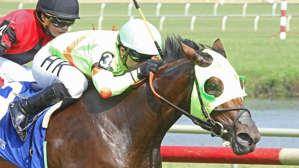 Maiden America Tuesday: The Hooptie Handicapper picks 2yo races at Colonial Downs, sees future stakes winner