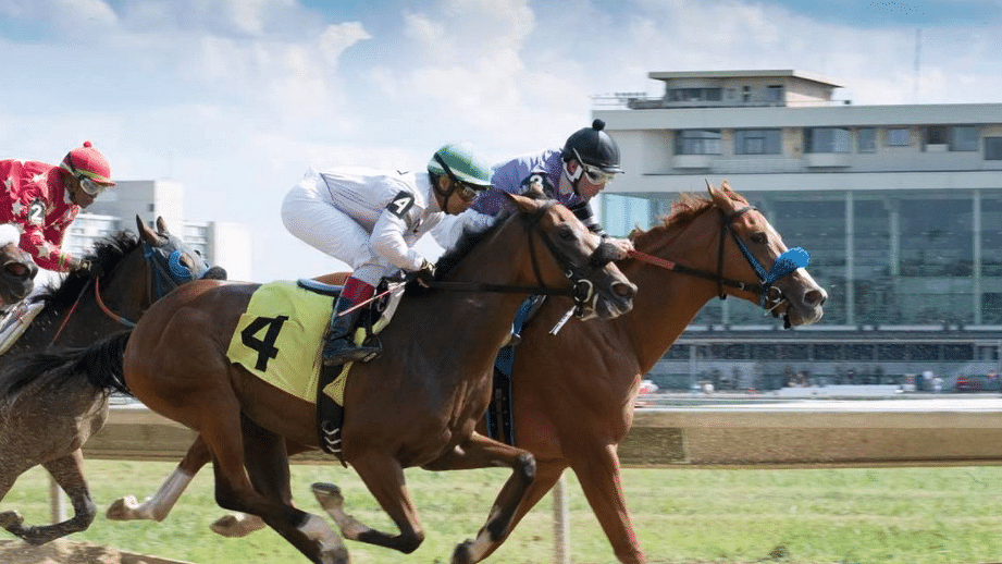Maiden America Monday: The Hooptie Handicapper picks 2yo races at Delaware Park, Thistledown and Indiana Grand