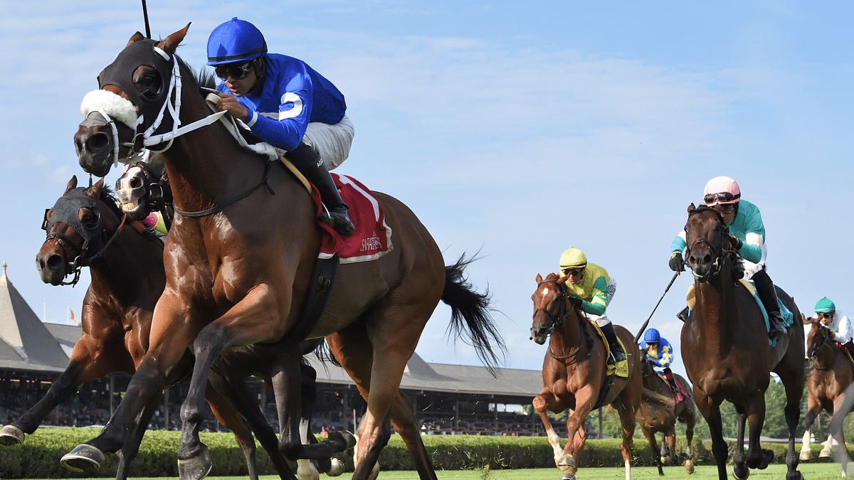 Saratoga Friday: It's New York-bred day and God's Tipster has picks for the West Point Stakes & Albany Stakes