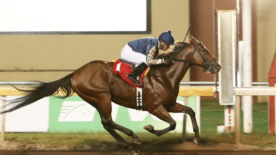 Garrity's Sunday Stakes picks 3 races at Remington Park – the Oklahoma Derby, Remington Oaks & Ricks Memorial