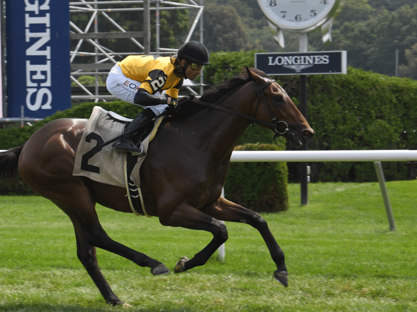 Garrity's Sunday Stakes picks races at Monmouth Park, Belmont and Woodbine, likes 2 more Appleby Euro imports