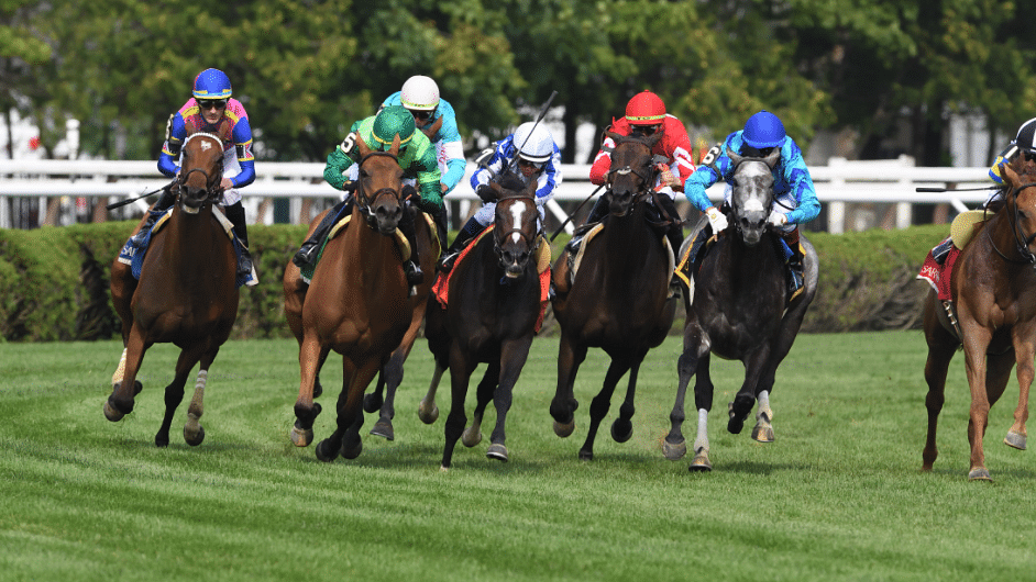 Saratoga Saturday: God's Tipster has 7 picks for the Spa in the 1st, 3rd, 4th, 5th, 8th, 11th, and 12th races
