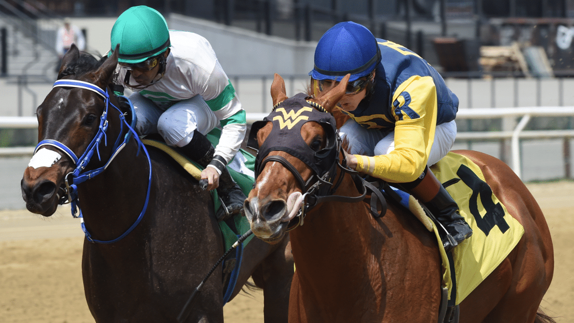 Garrity's Friday Dad's Hat Happy Hour Handicapping picks races at Saratoga, Ellis Park, Gulfstream Park, Woodbine