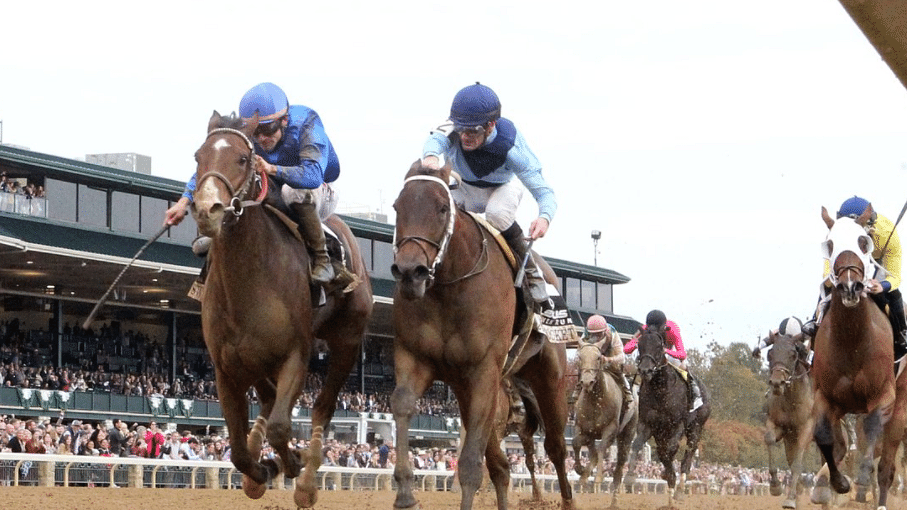 Garrity's Sunday Stakes picks the Dowager at Keeneland, Point of Entry at Belmont, more