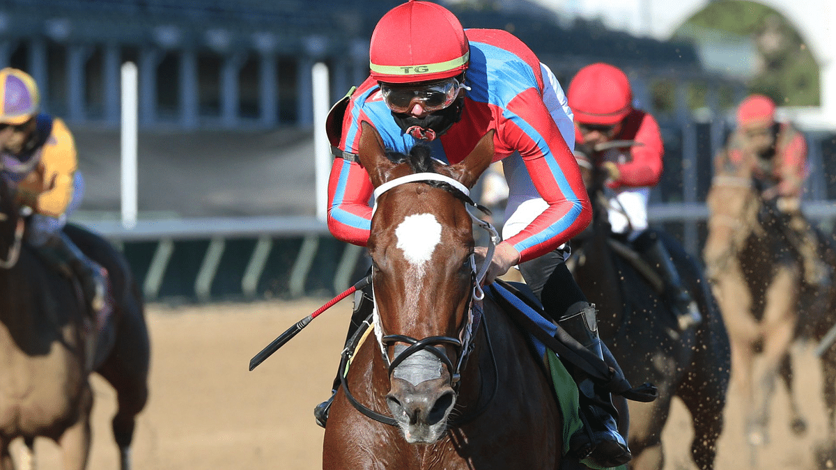 Churchill Downs Friday: God's Tipster picks longshots in the 5th and 8th races