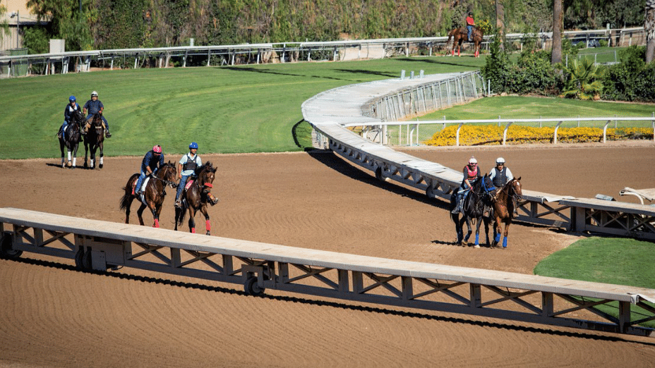 Garrity's Friday Dad's Hat Happy Hour Handicapping picks stakes races at Belmont and Santa Anita, opening day