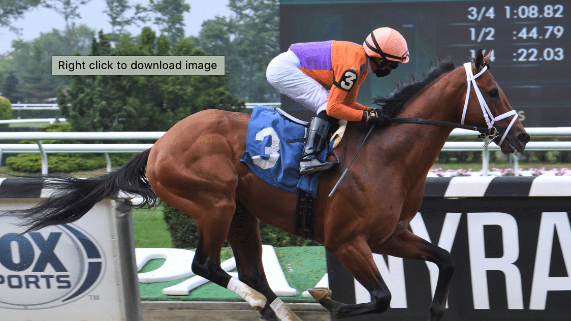 Belmont Park and Keeneland Saturday: God's Tipster has picks in 7 races after going 2-for-3 on Friday