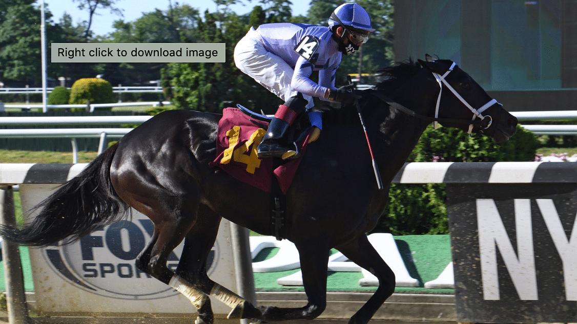 Garrity's Saturday Stakes (plus two allowances) picks races from Belmont, Keeneland and Santa Anita
