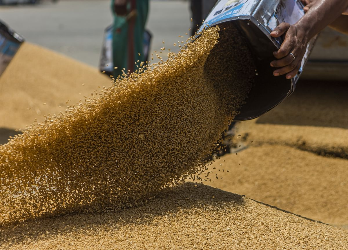 Government Hopeful Of Achieving Record Foodgrain Target For FY20