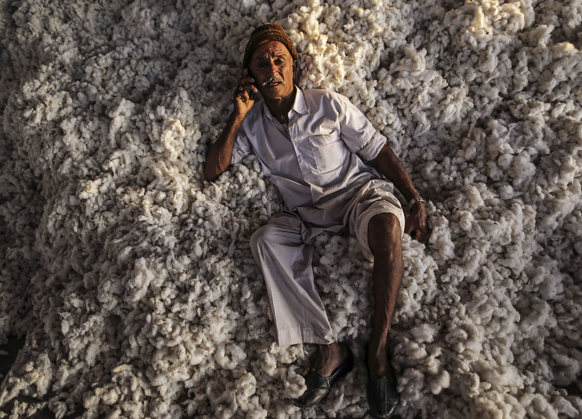 India Imposes Duty on Cotton Imports to Support Farmers