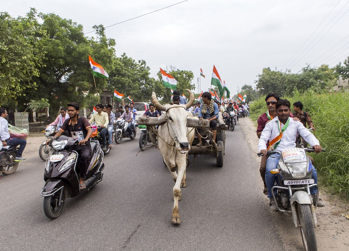 Populists Take Center Stage as India's Big Election Nears
