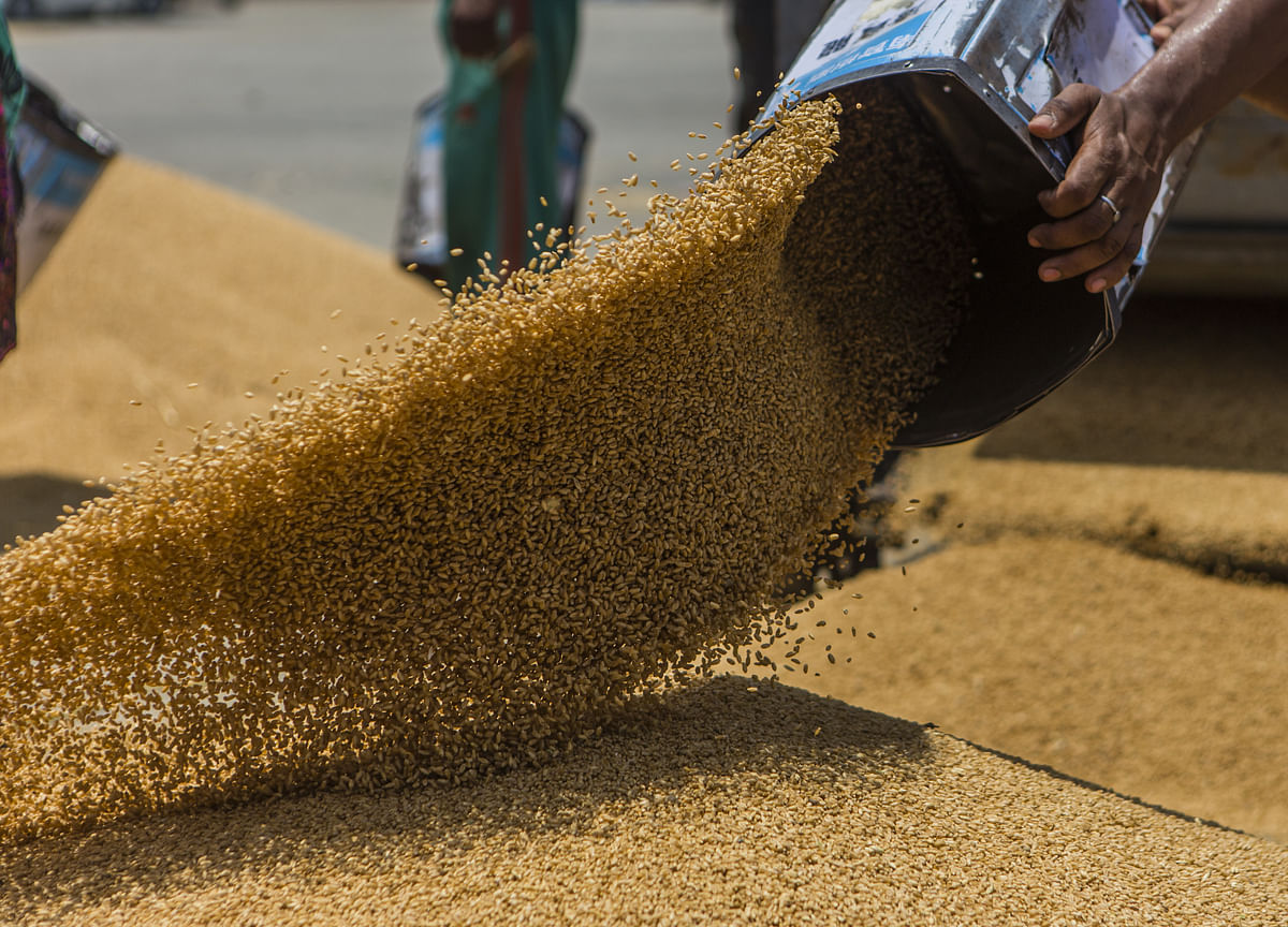 Cabinet Approves Distribution Of Free Foodgrains Till November 2020