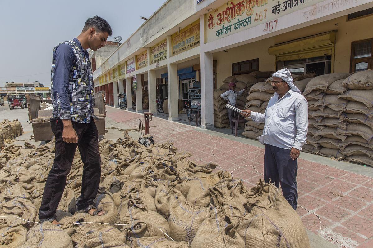 A farmer counts sacks of wheat at the New Grain Market in Karnal, Haryana, India, on May 19, 2016. (Photographer: Prashanth Vishwanathan/Bloomberg)