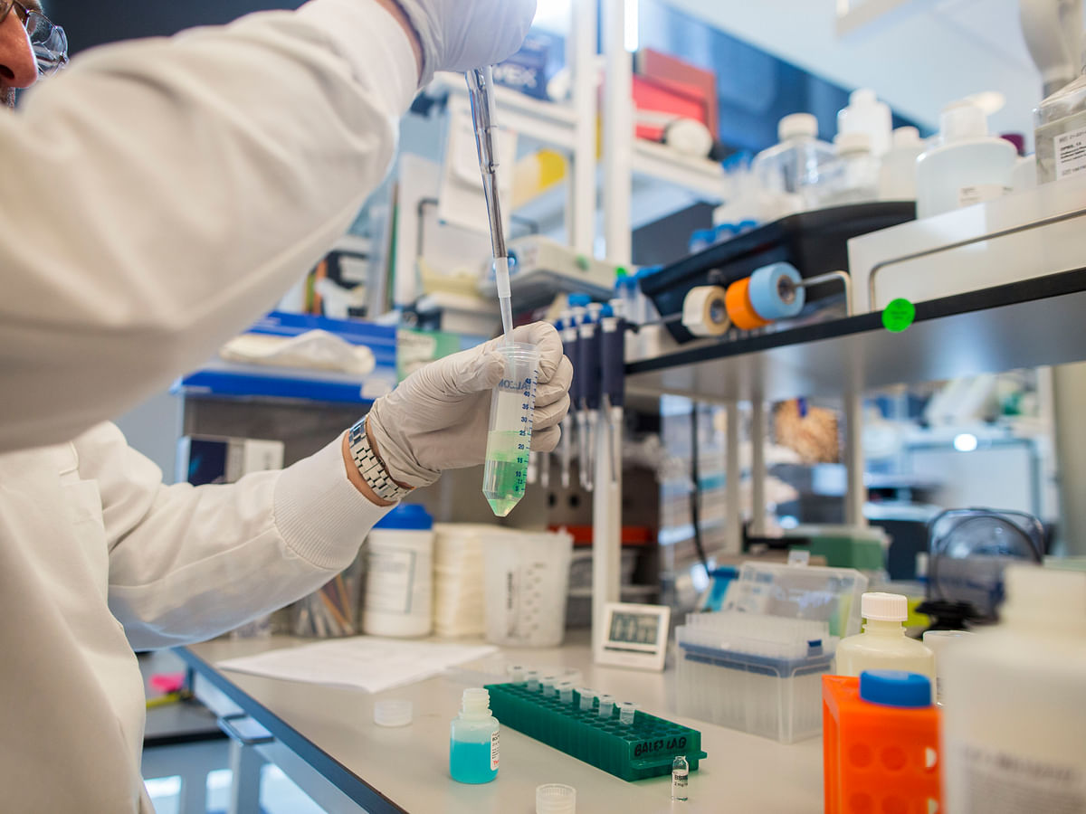 Rossari Biotech IPO: Here's All You Need To Know