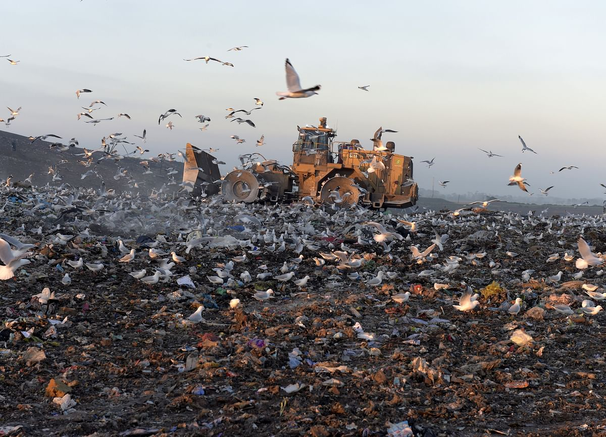 Antony Waste Handling Cell Raises Rs 60.94 Crore From Anchor Investors