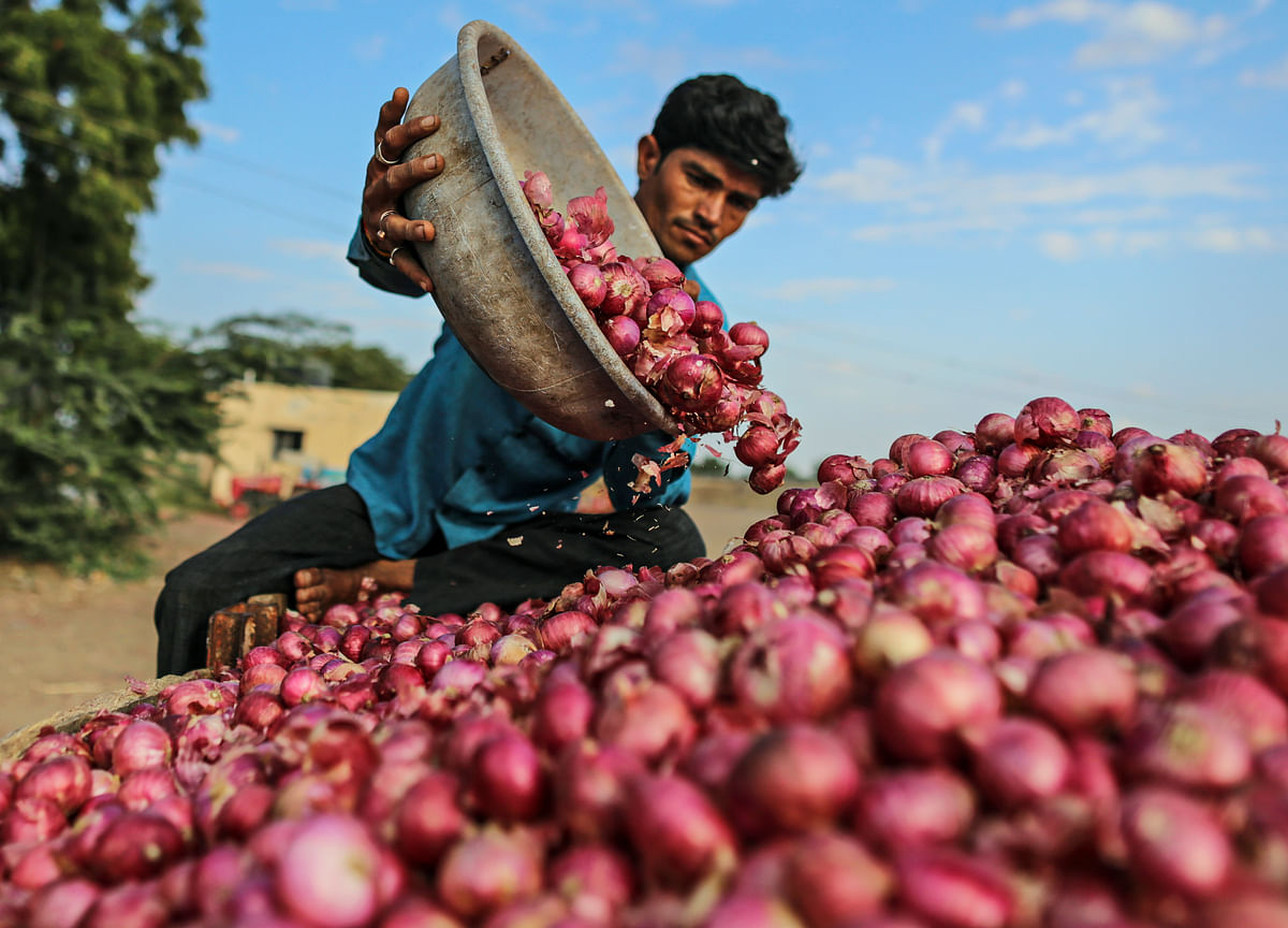 Government Lets State-Run Agencies Import Onions To Check Prices