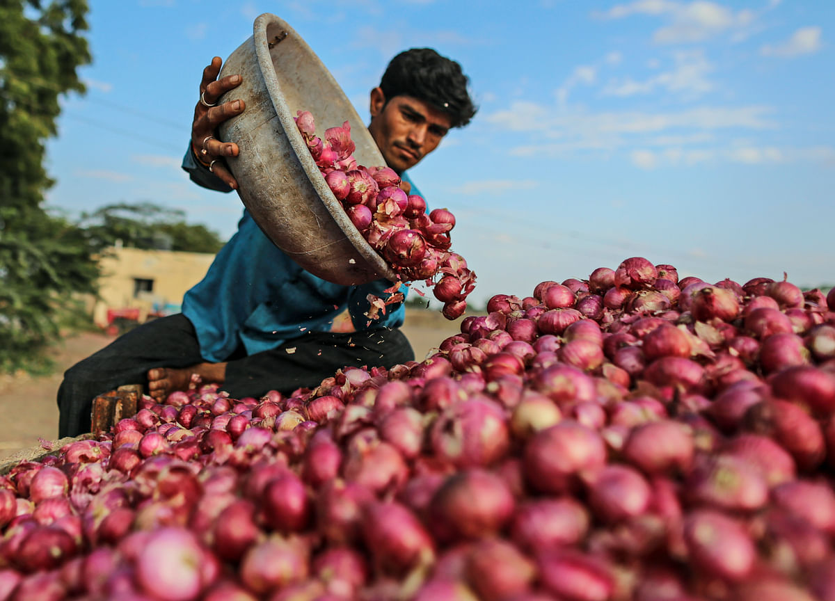 Government Relaxes Import Norms For Onion To Boost Domestic Supply, Check Prices