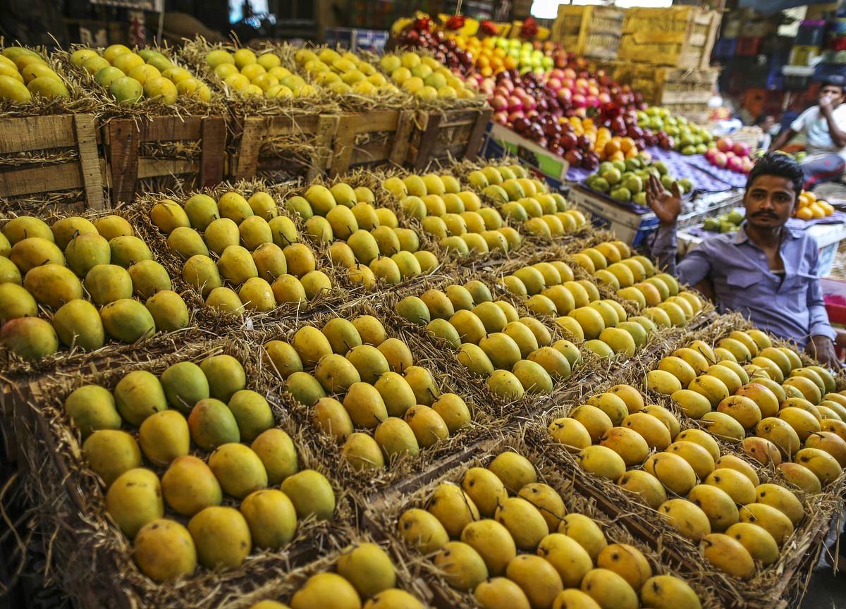 Maharashtra's Farmers Are Struggling To Ship Their Mangoes Amid Lockdown