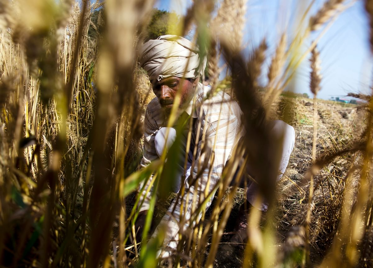 #BQDebates–Budget 2019: How Helpful Will Modi's Farm Income Support Be?