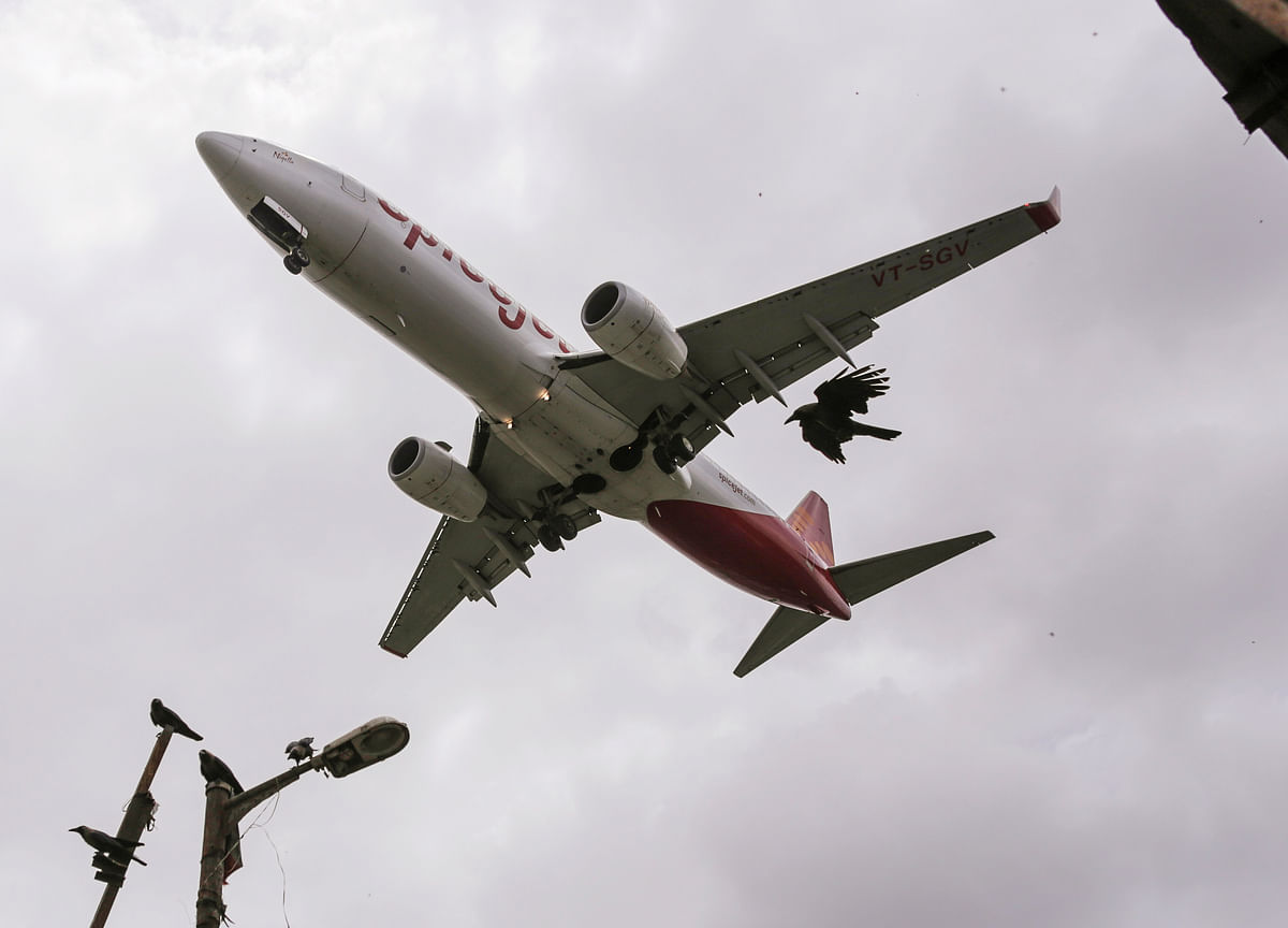 SpiceJet To Launch 46 New Flights From Next Month