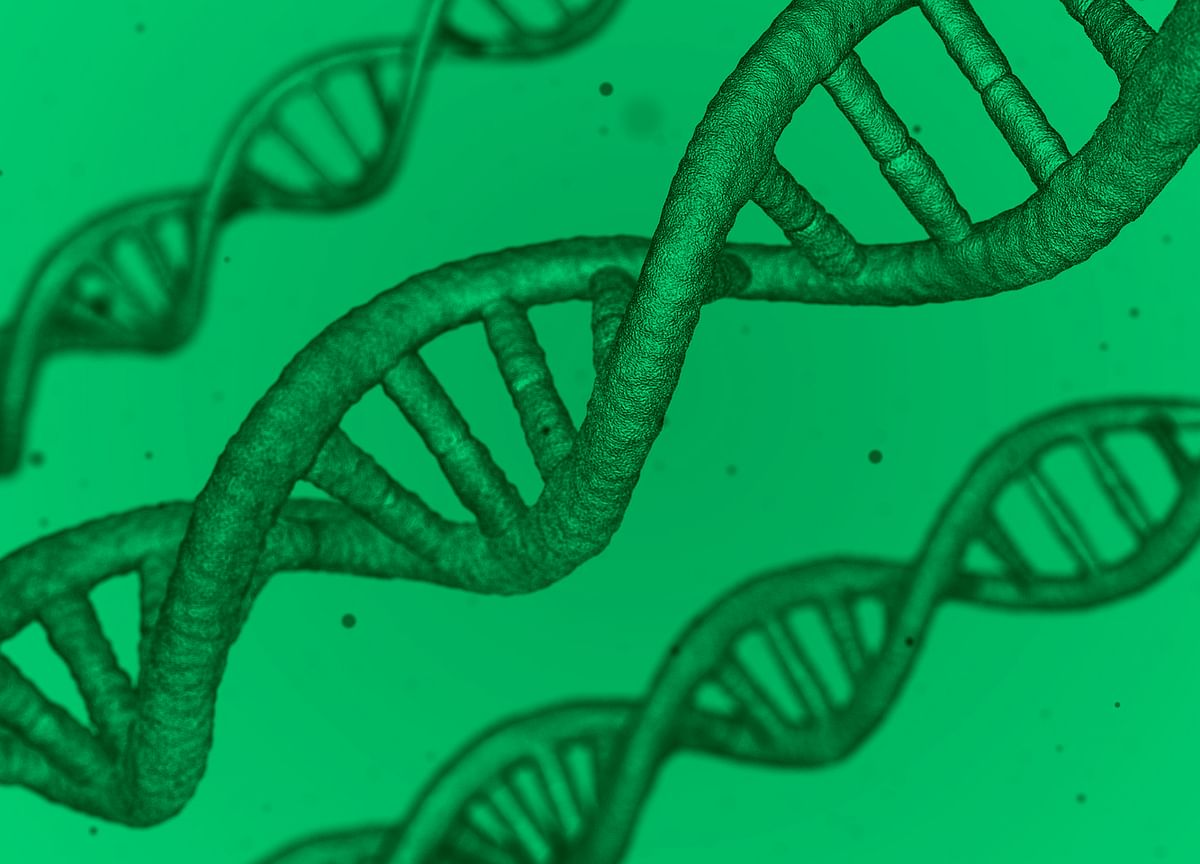 Startup Street: Forget Bitcoin, This Startup Wants Your Genes On The Blockchain