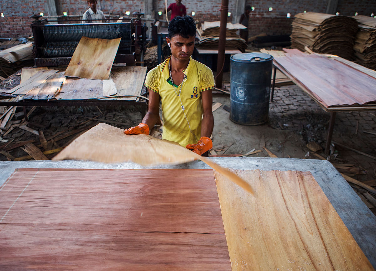 Greenply Doesn't Expect Further Price Cuts In Fibreboard Business