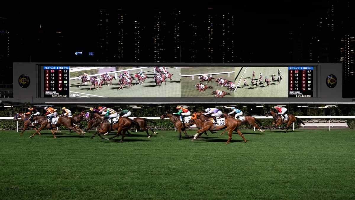 uk horse racing betting rules on blackjack