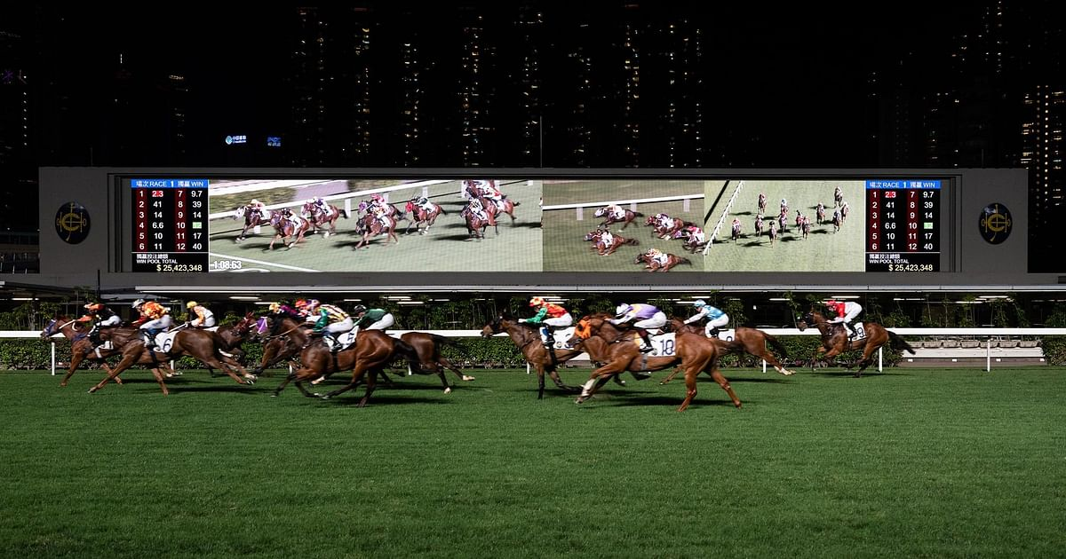 horse racing betting tips books on sleep
