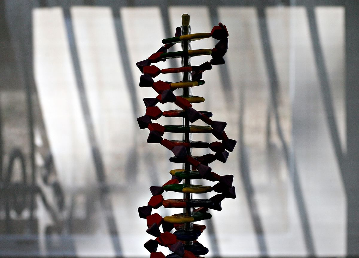 Crispr Infuses First Human in Landmark Gene-Editing Study
