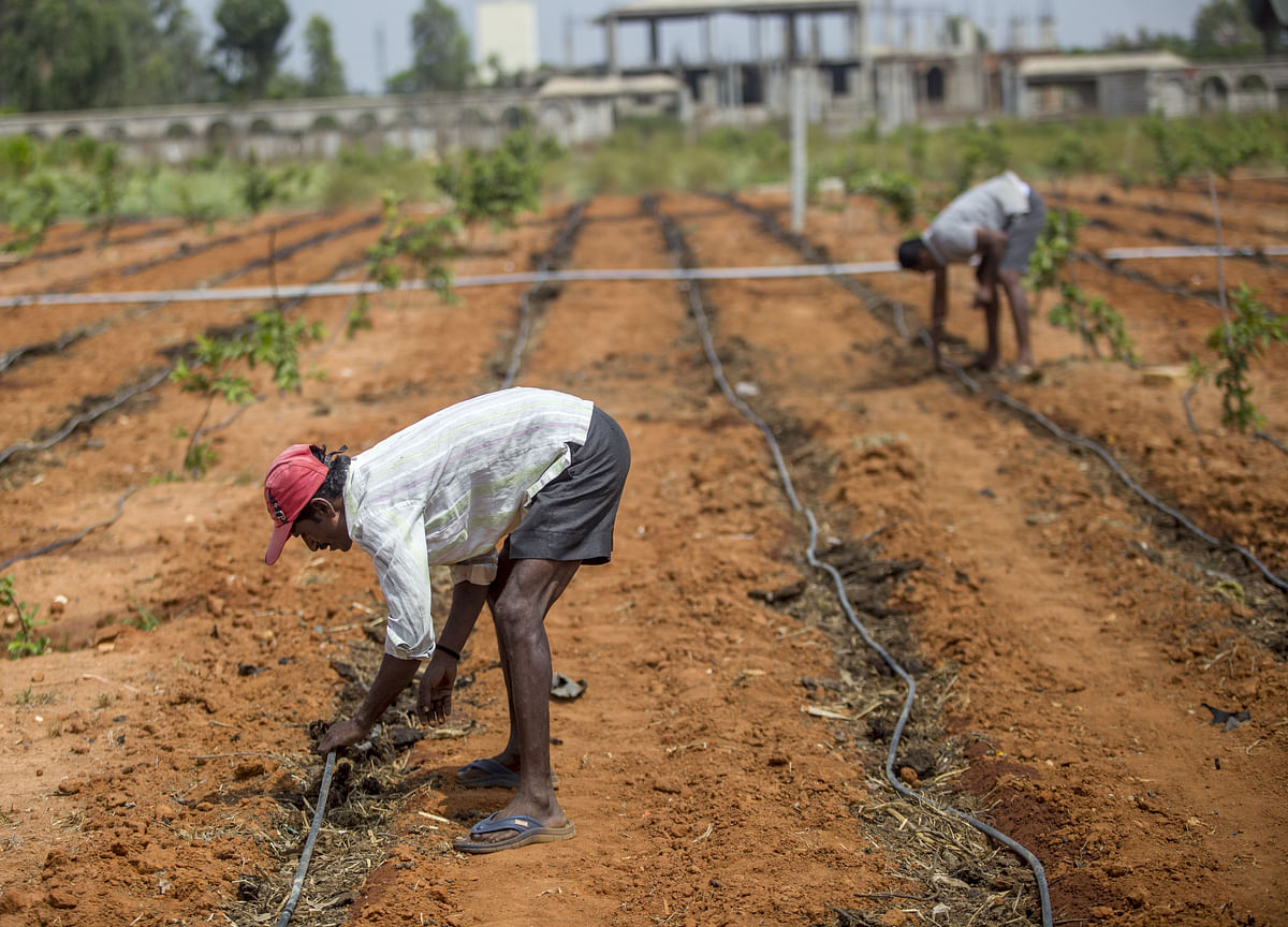 Farm Loan Waivers To Hit States' Fiscal Deficit Targets, Says Report