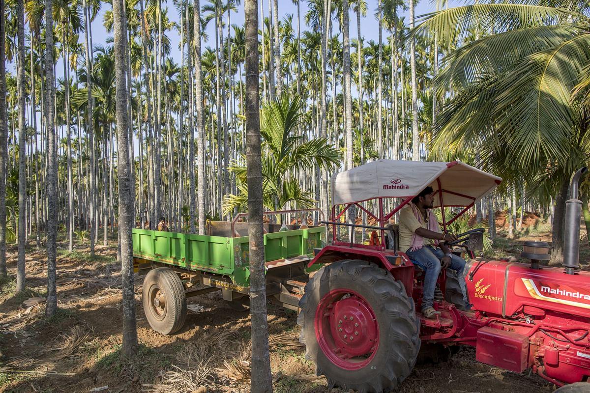 M&M Q4 Review - Sharp Turnaround In Global Auto, Farm Equipment Subsidiaries: Prabhudas Lilladher