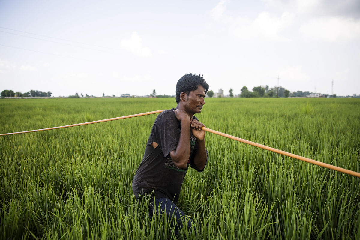 Budget 2019: Government To Provide Rs 6,000 Each To 12 Crore Farmer Families