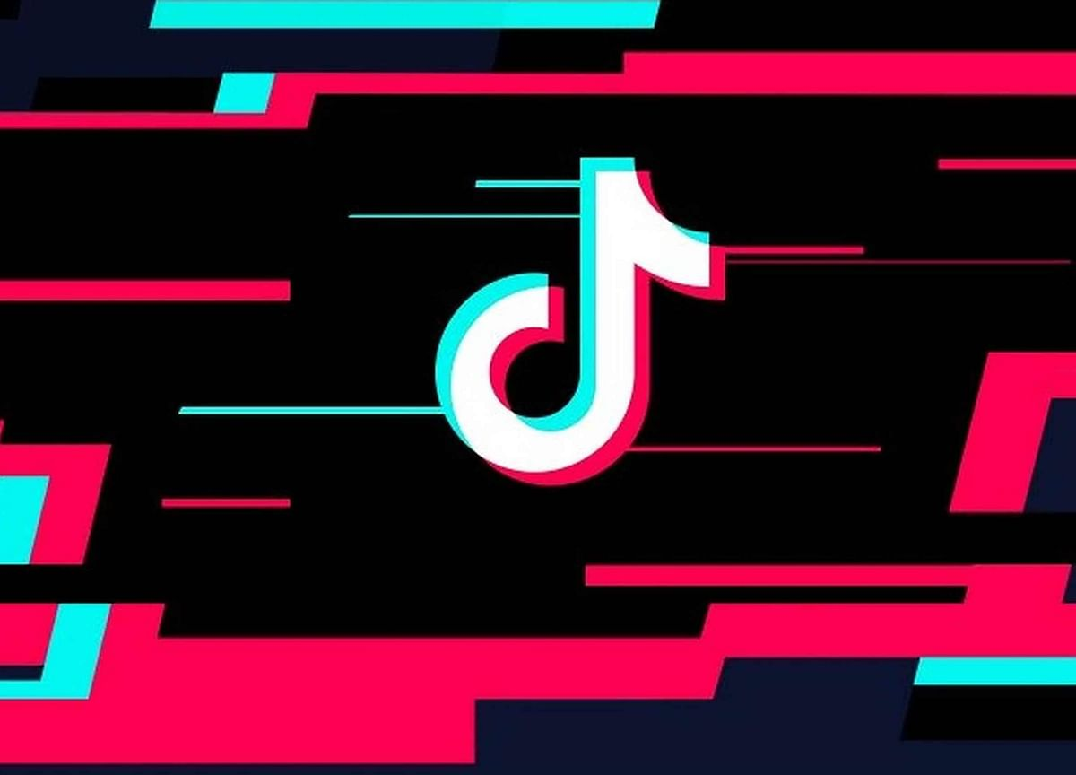 TN Govt Wants TikTok Banned, MLA Says It's Ripping Families Apart