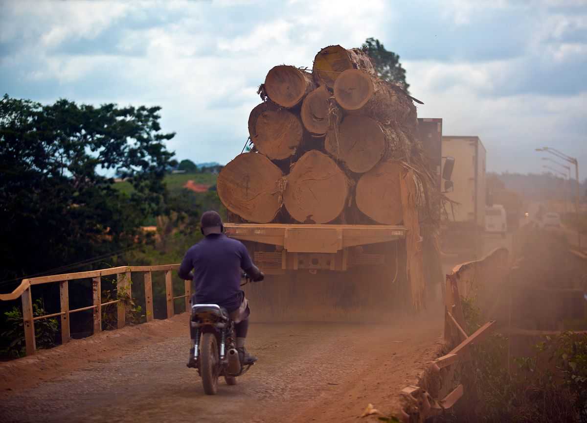 Cargill Plans to Work With Farmers on Save-the-Forest Initiative