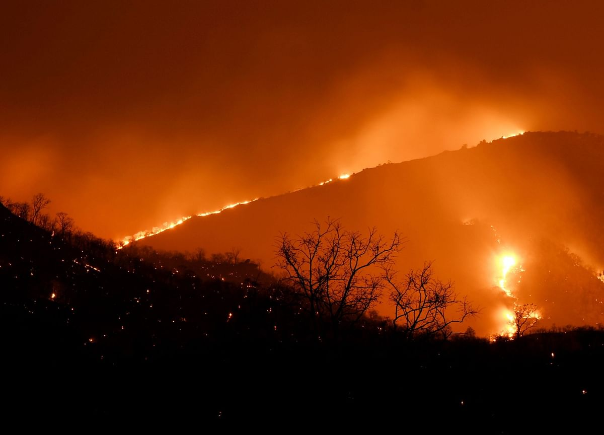 ISRO Says 10K Acres of Bandipur Burnt, Officials Downplay Damage