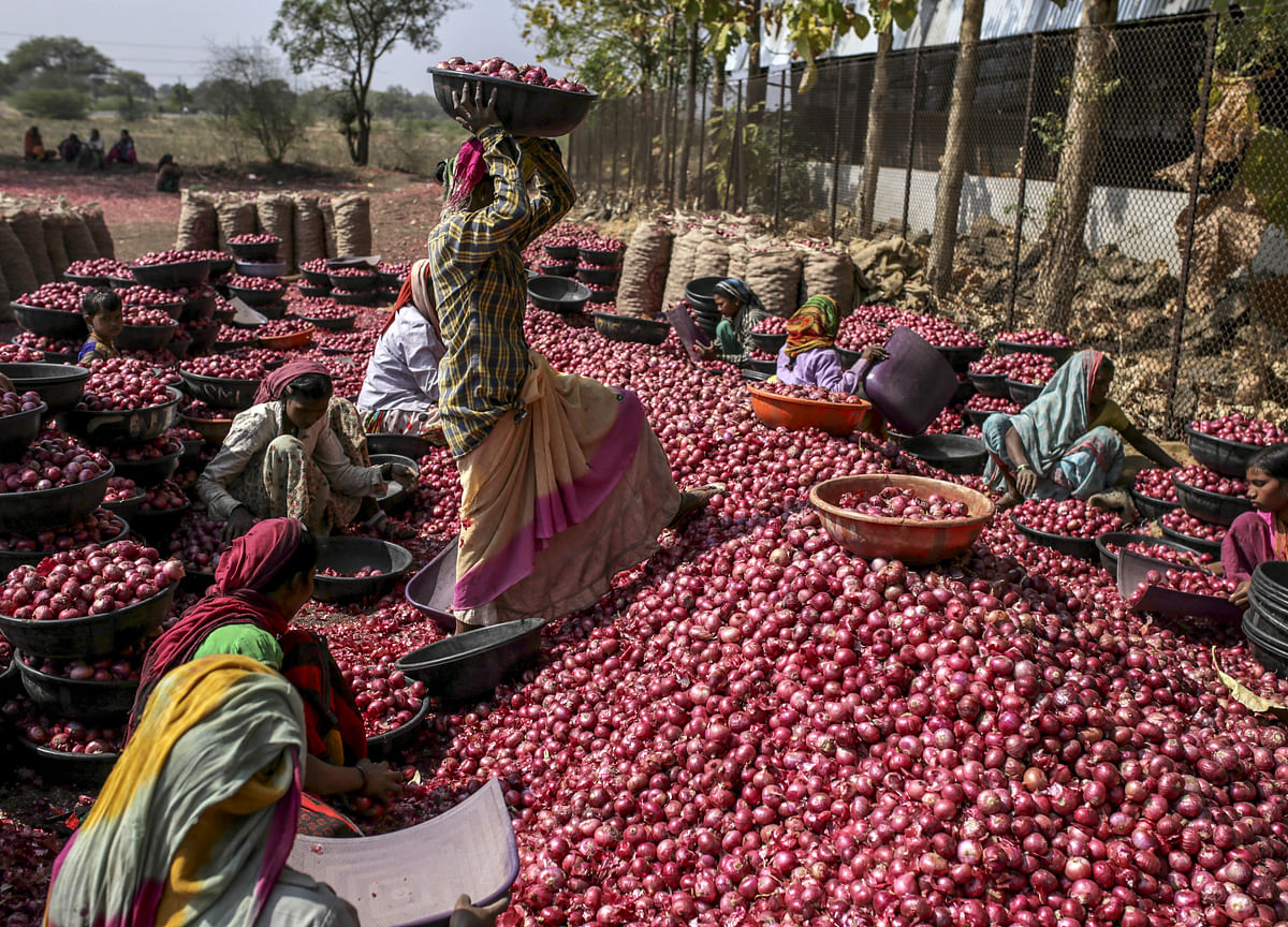 RBI Working Group Suggests Reforms To Boost Agri Credit