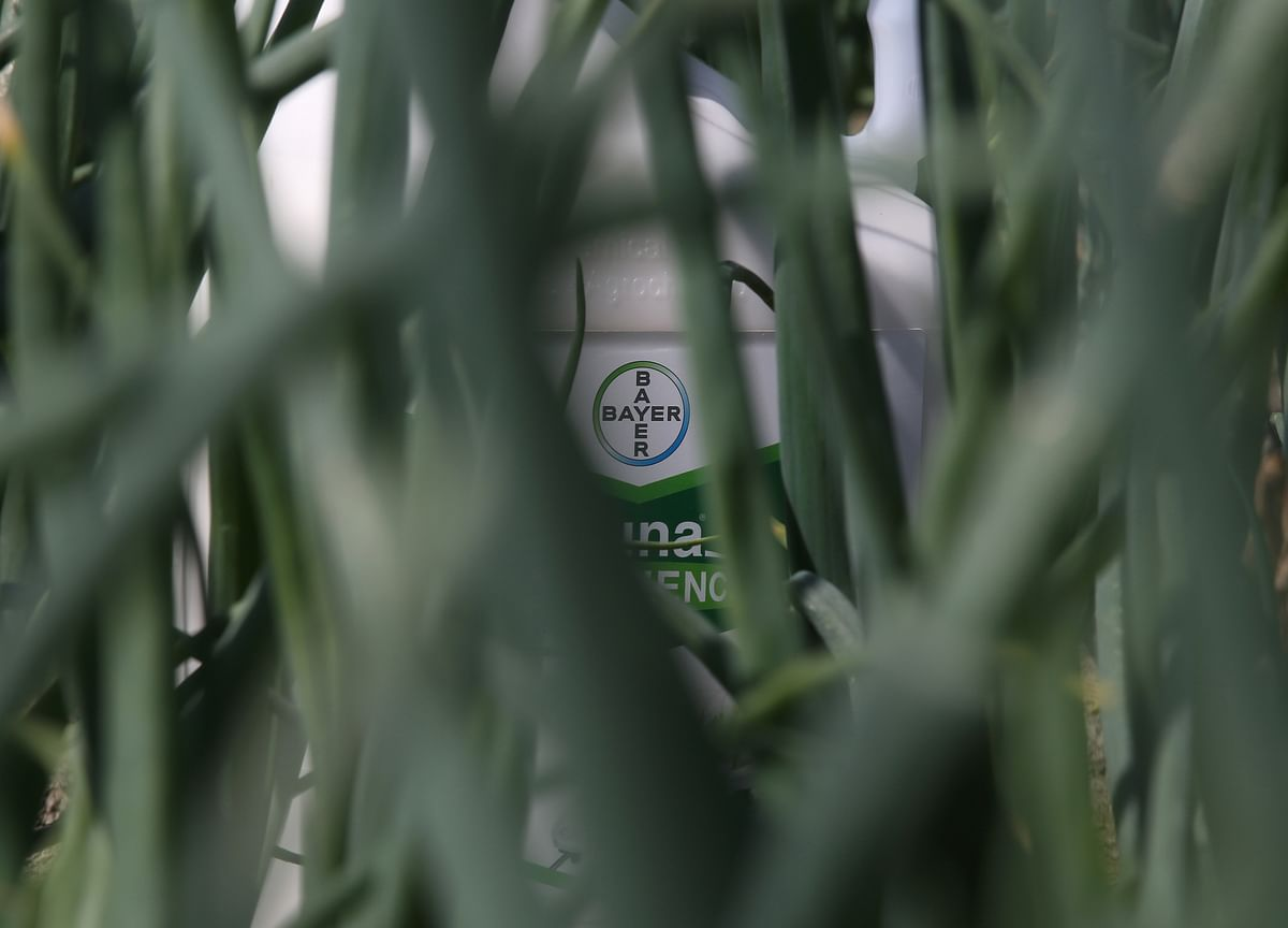 Bayer Gets Boost From Agriculture as Investor Meeting Looms