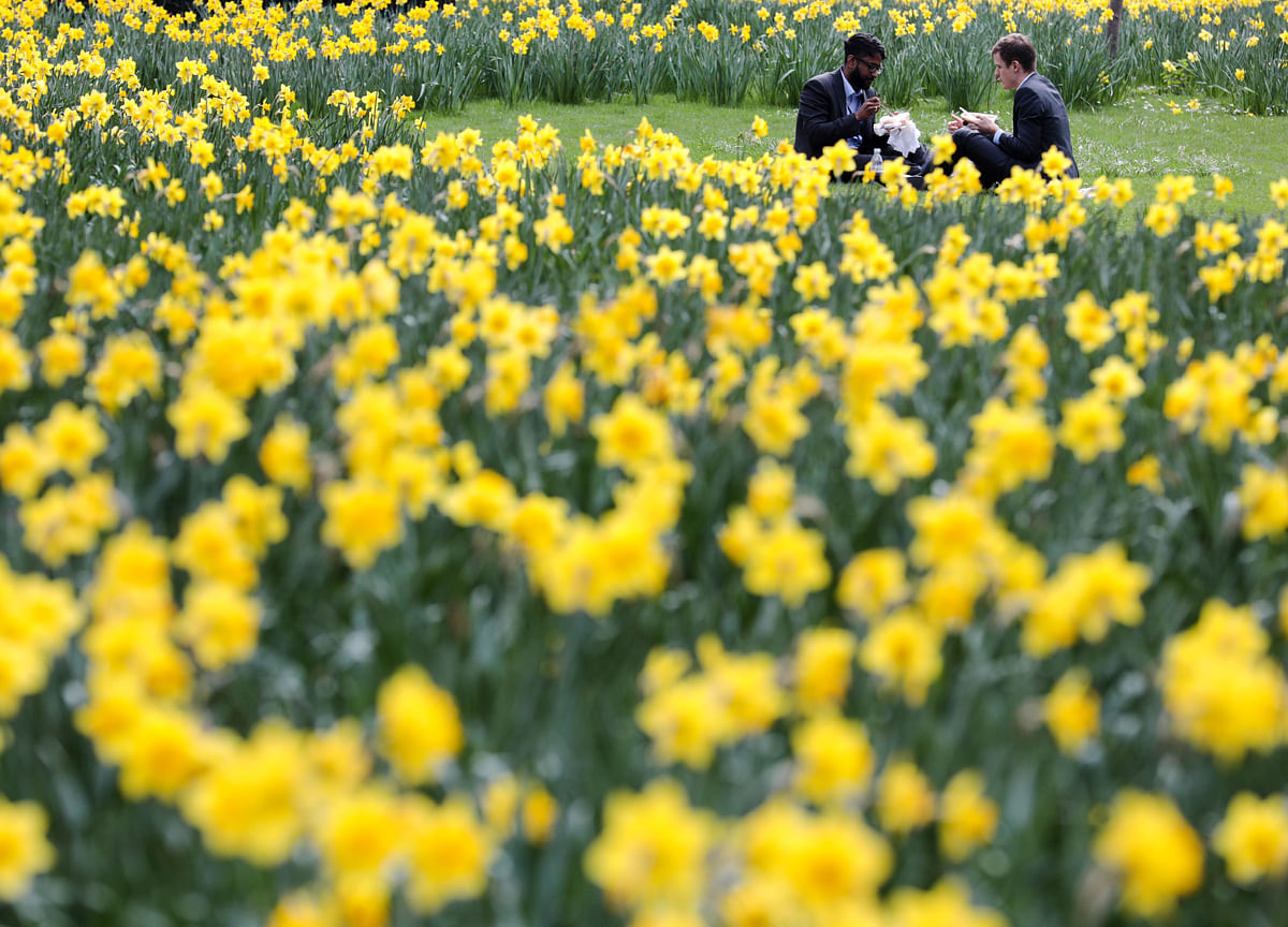Markets Catch Spring Fever. Is It Justified?