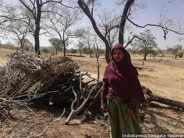 At Katlabor village, Kali Bai, 18, with the stack of firewood she and her mother collected. This pile will last her family a year. It is usually the women who collect firewood in the dry season in Rajasthan.