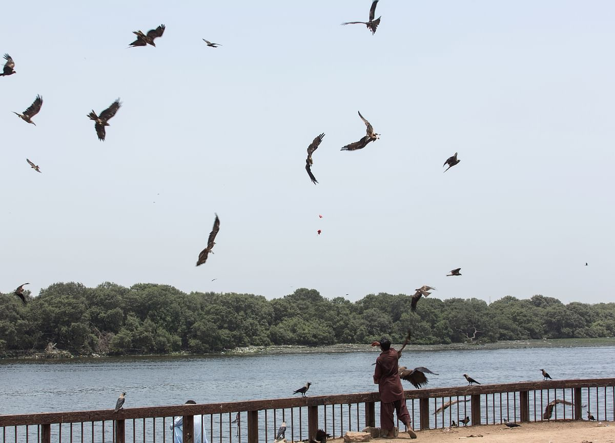 This Is The Time For Vulture Investing, Says Manish Sonthalia
