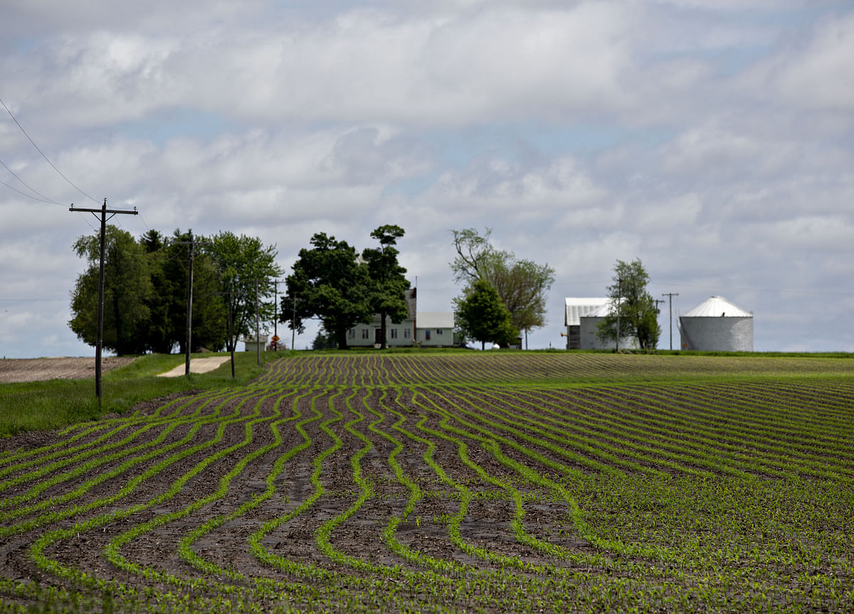 Farm Deluge Starts to Seep Into America's Fragile Rural Economy