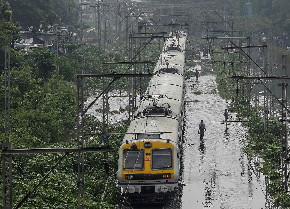 13 Railway Projects Exempted From Forest Approvals, Risking Wildlife Sanctuaries
