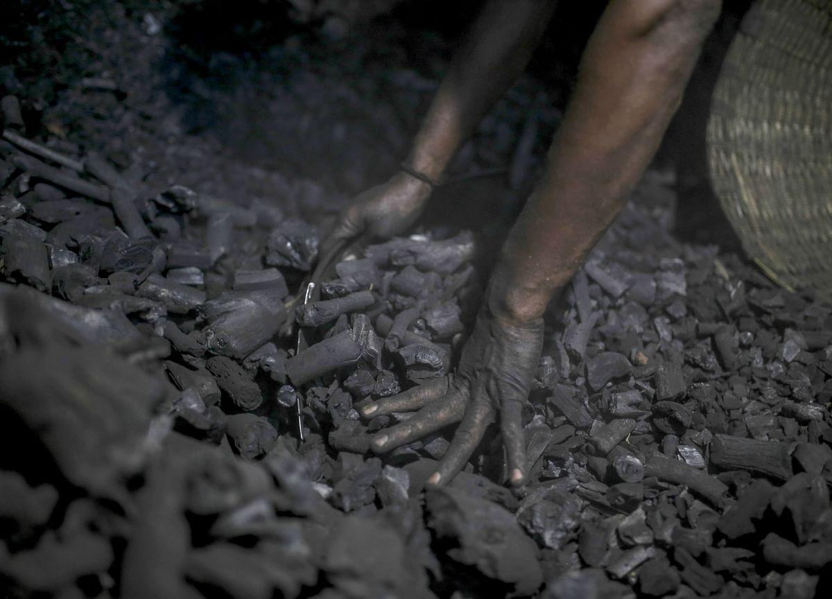 Q1 Results: Coal India's Profit Beats Estimates