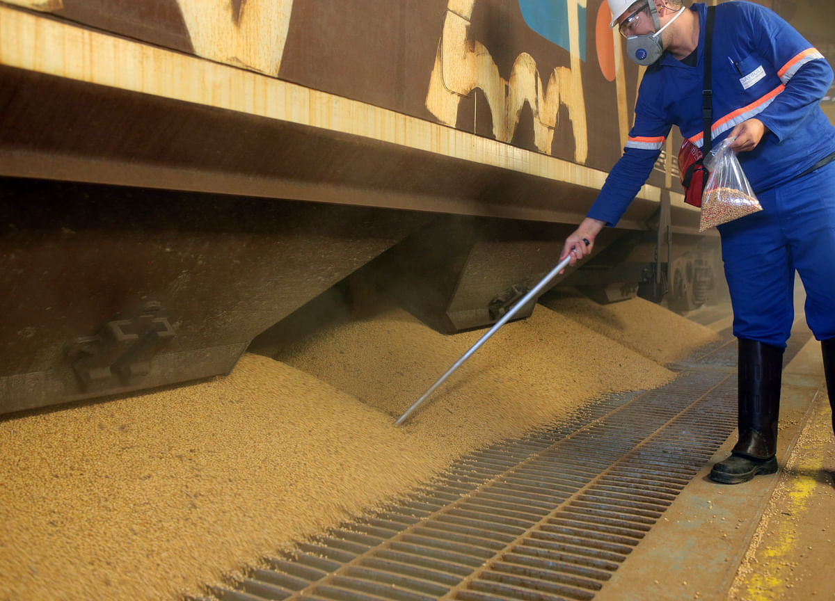 China Ramps Up Brazil Soybean Imports, Rebuffing U.S. Crops