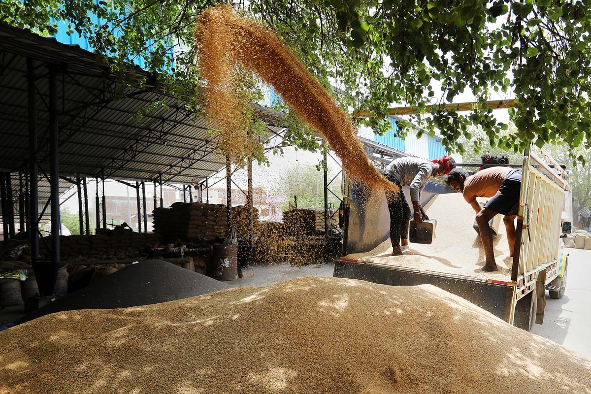 Farm Revenues,  Profits Set To Rise Despite Uneven Rains, Says Crisil