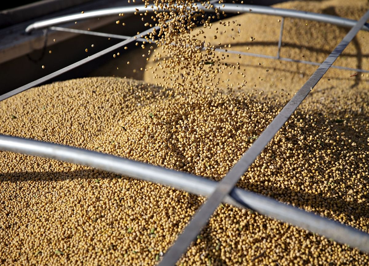China Hits Back at Trump With Higher Tariffs on Soy, Autos