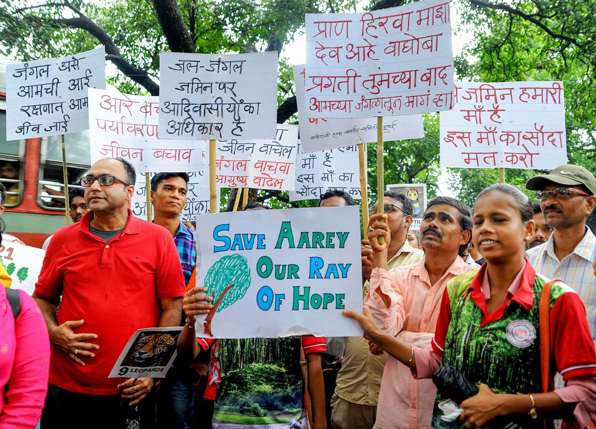 Plea In High Court Against BMC Nod To Axe 2,600 Aarey Trees For Metro Car Shed